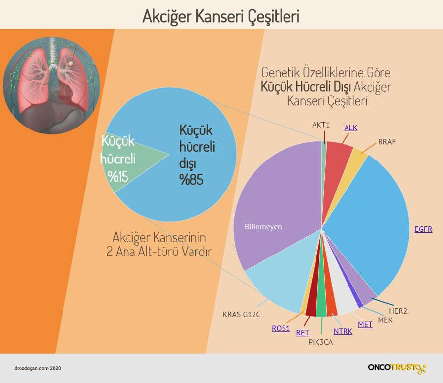 akciger kanseri cesitleri