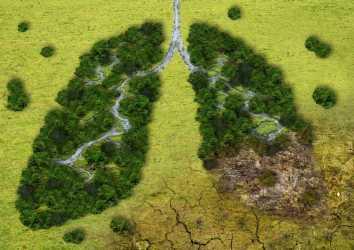 Akciğer kanserinde EGFR ekzon 20 insersiyo mutasyonuna yönelik ilk tedavi FDA onayı aldı