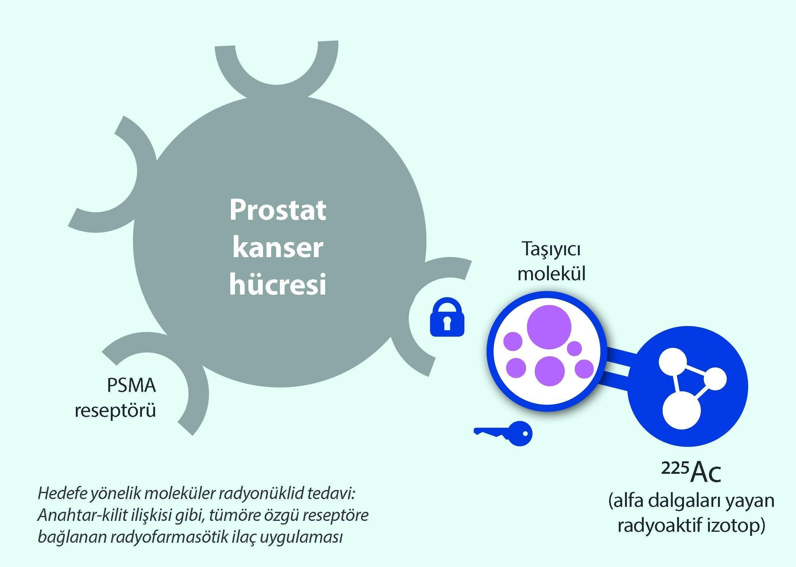 aktinyum alfa dalga tedavisi ac 225 ileri evre prostat kanseri