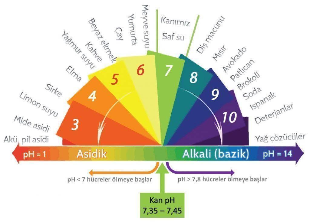 alkali diyet asit ve baz ph spektrum alkali yiyecekler kanser tedavisi 1024x734