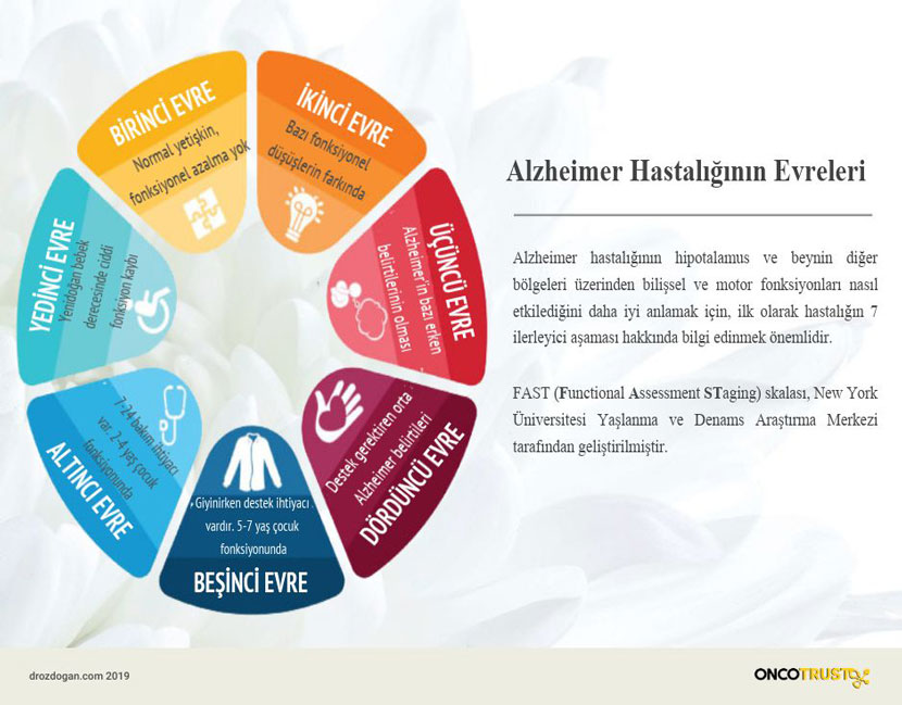 alzheimer hastaliginin evreleri