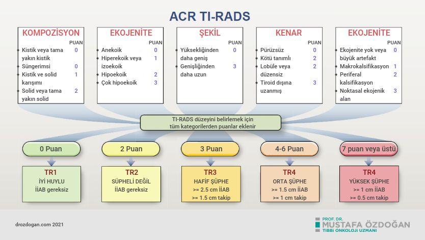 amerikan radyoloji koleji acr tiroid goruntuleme raporlama ve veri sistemi ti rads biyopsi rehberi