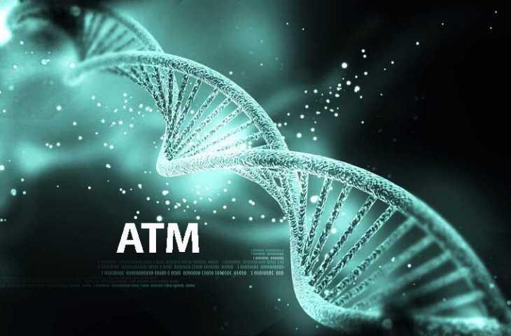 ATM gen mutasyonu nedir? Bilinmesi gerekenler
