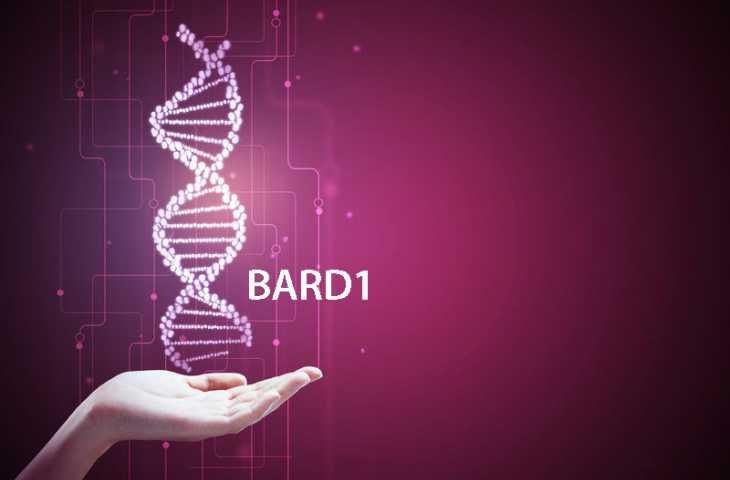 BARD1 gen mutasyonu nedir? Bilinmesi gerekenler