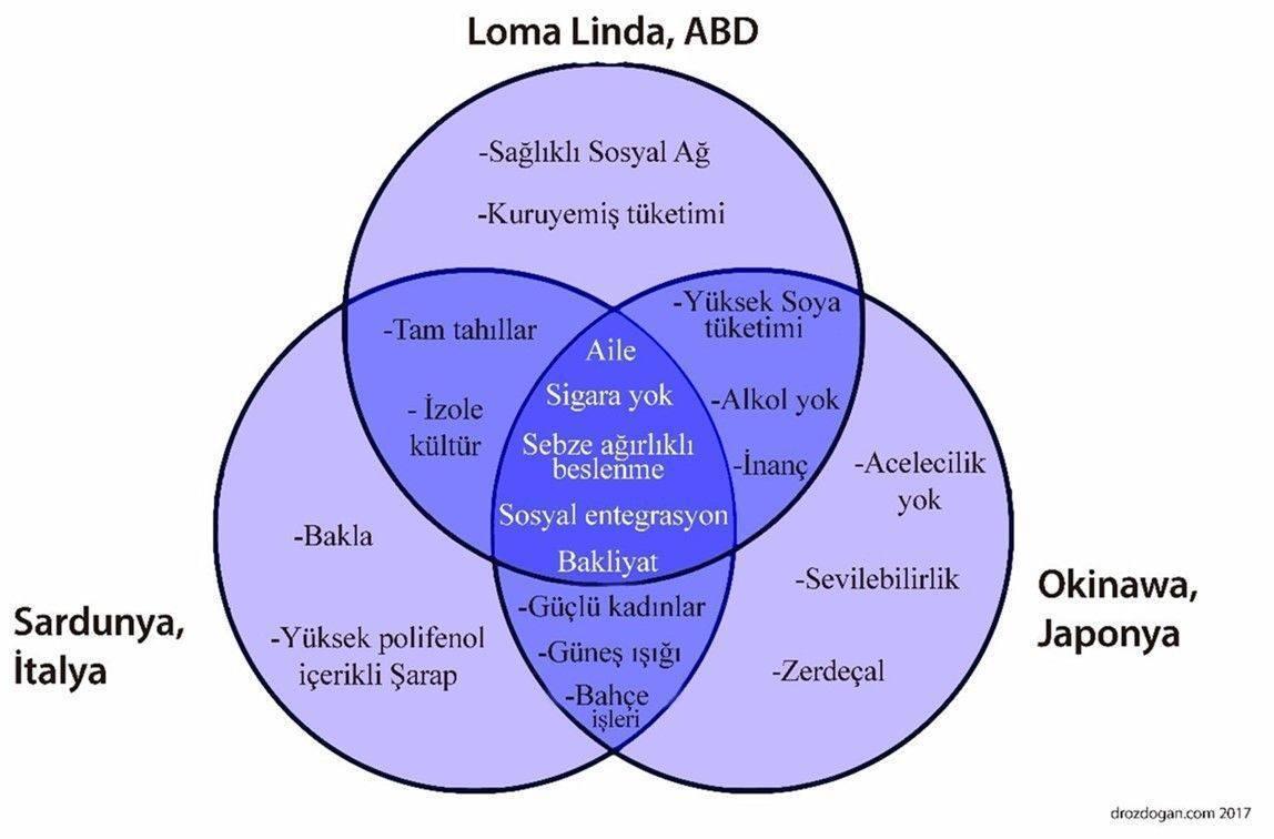 blue zones mavi bölge insanlarının ortak alışkanlıkları nelerdir