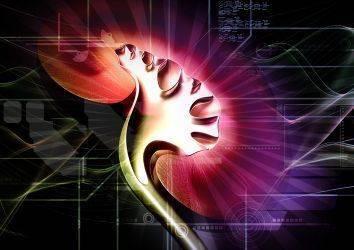 Böbreğin nadir görülen tümörleri - güncel tedaviler