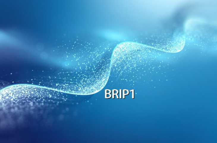 BRIP1 gen mutasyonu nedir? Bilinmesi gerekenler