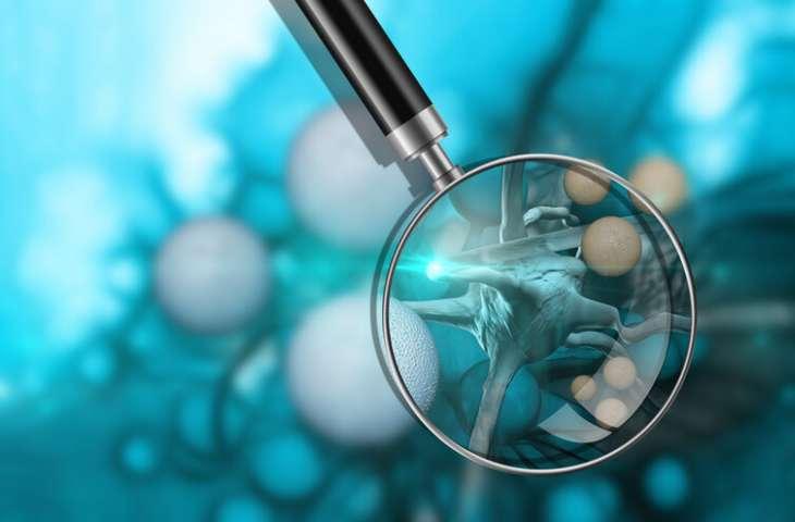 Lenfoid tümörlerin tedavisi için yeni bir canlı kanser ilacı: CAR-NK