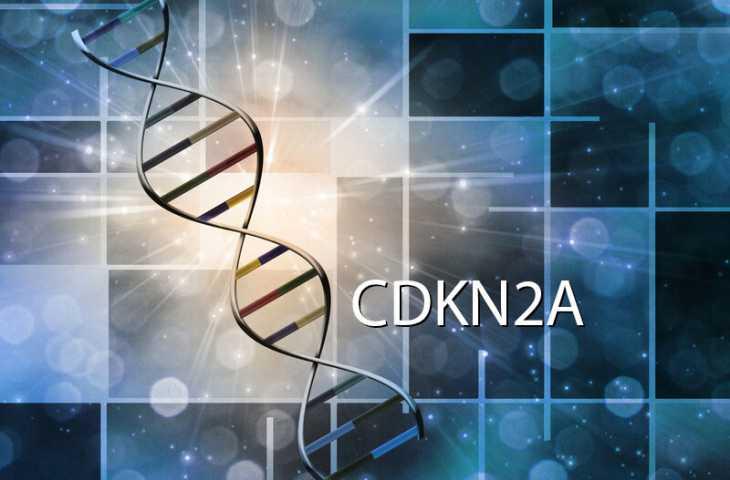 CDKN2A mutasyonu nedir? Melanom ve pankreas kanseri riski ne kadar?