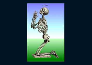 Cheselden ve Osteografisi 1733 – Stille birleşen anatomi