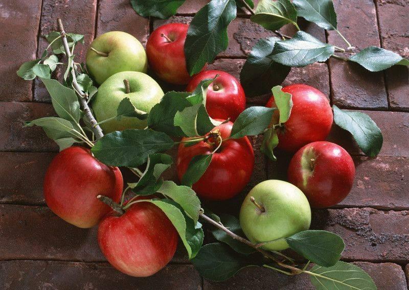 Çok çeşitli renk ve dokudan oluşan gıdalar arasında, en doğal görünüme sahip olanları t?