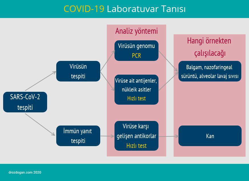 covid 19 laboratuvar tanisi
