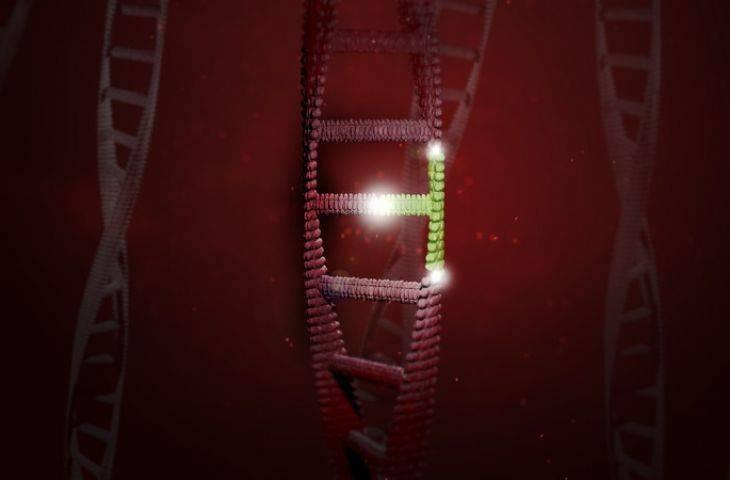 CRISPR ile her bir kanser hücresinin büyümesi takip edilebilecek