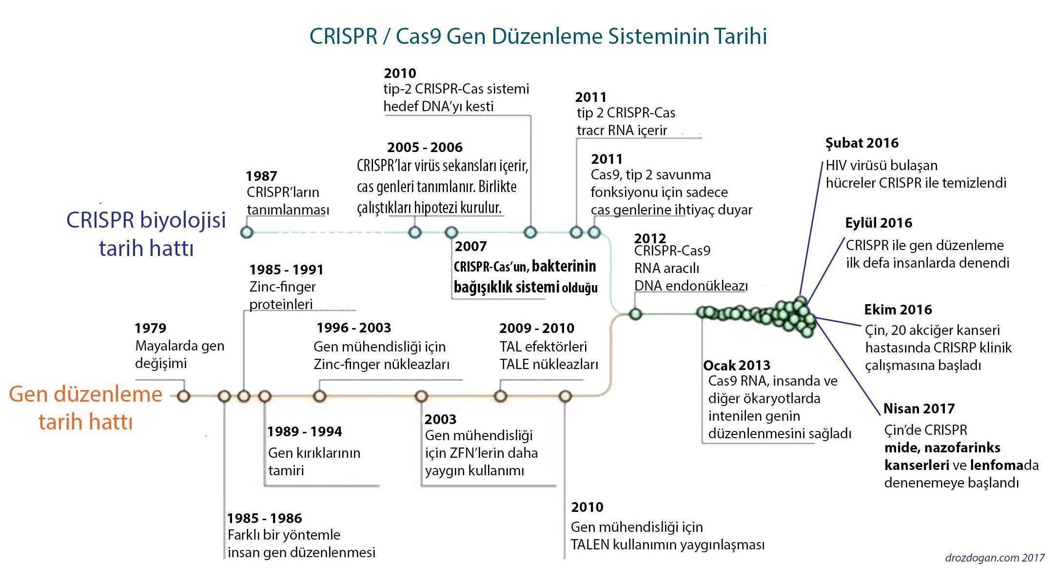 crispr ve kanser tarihi gen duzenleme genom editleme