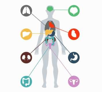 DICER1 sendromu nedir? Belirtileri ve tedavisi