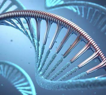 DNA sentezi nedir? Kanser oluşumu açısından önemi