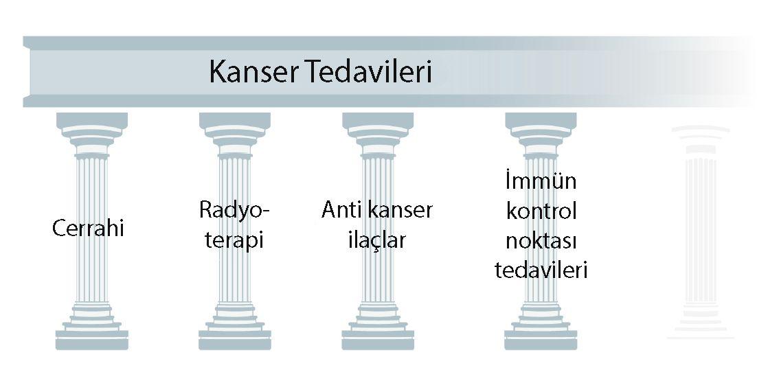dördüncü kanser tedavi çeşitleri immünoterapi immün kontrol noktası inhibitörleri