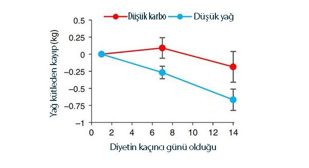 düşük yağlı vs ketojenik diyet yağdan ne kadar kaybettirir