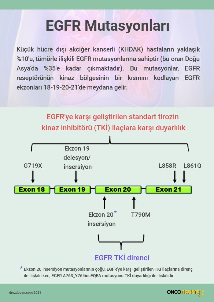 egfr ekzon 20 insersiyo mutasyonu nedir