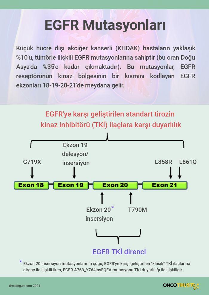 egfr ekzon 20 insersiyo mutasyonu nedir mobocertinib