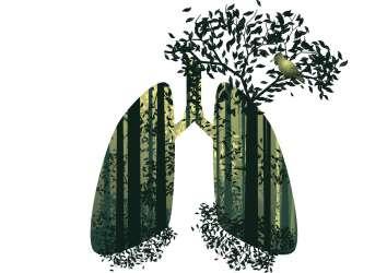 EGFR mutant akciğer kanserinde metformin ve tirozin kinaz inhibitörü sağkalımı uzatır