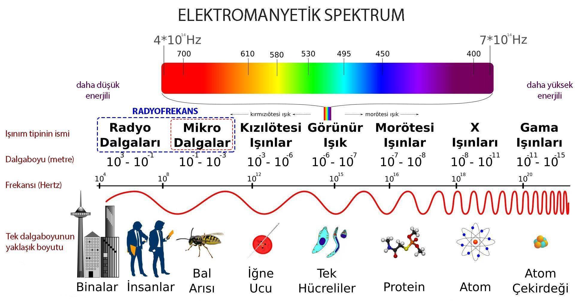 elektromanyetik spektrum radyofrekans dalga boyu mikrodalga
