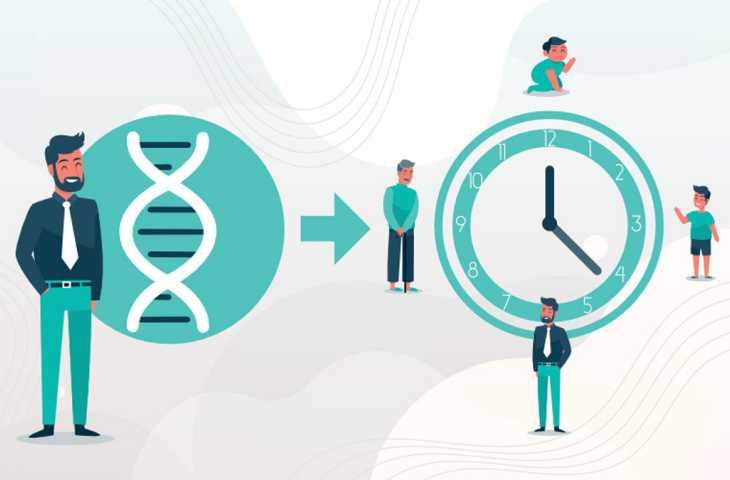 Epigenetik saat ile kanser tedavisinden sonra biyolojik yaşlanmayı belirlemek