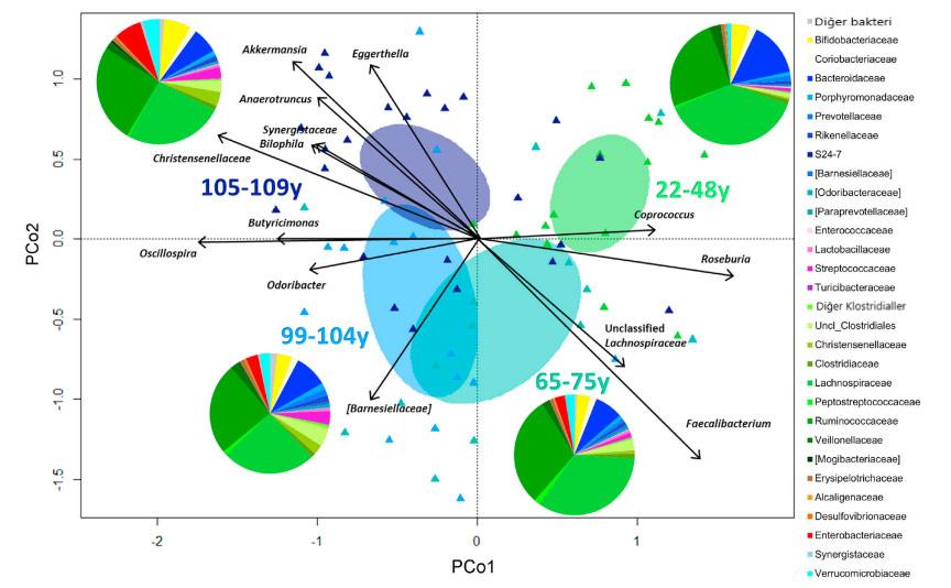 farkli yas gruplarina göre bagirsak mikrobiyota varyasyonlari