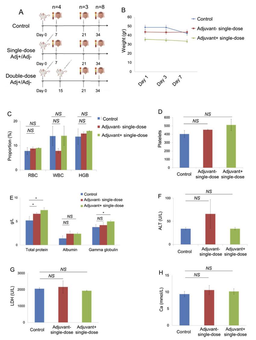 gama ışını ile inaktive koronavirüs aşısının bir haftalık sonuçları