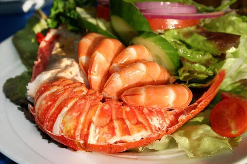 güney sahili diyeti south beach diet
