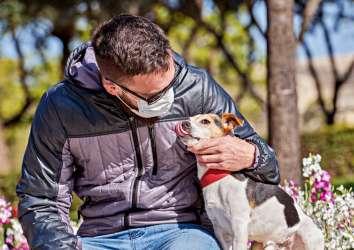 Halen köpeğimi gezdirebilir miyim? Ve koronavirüs hakkında diğer aklımızı kurcalayanlar