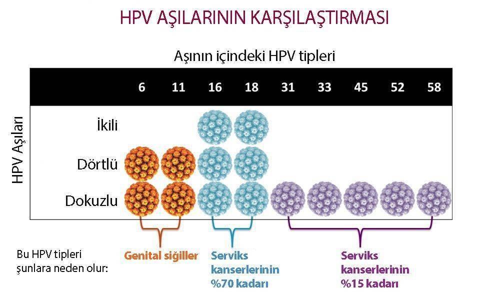 hpv aşı çeşitleri ikili dörtlü dokuzlu aşı gardasil cervarix