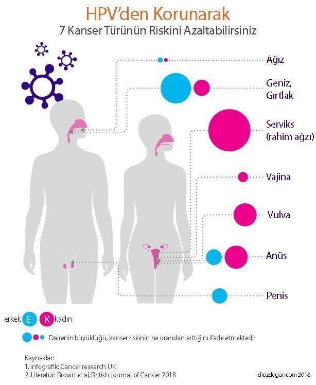 hpv ilişkili kanserler hangi kansere neden olur