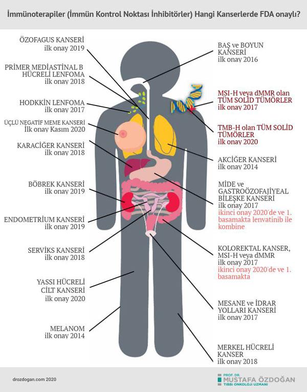 immunoterapi hangi kanser hastalarinda uygulanir fda onayi aldi