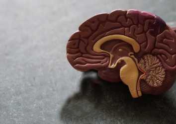 İmmünoterapi yanıtını ön görmede beyin omurilik sıvısı analizi