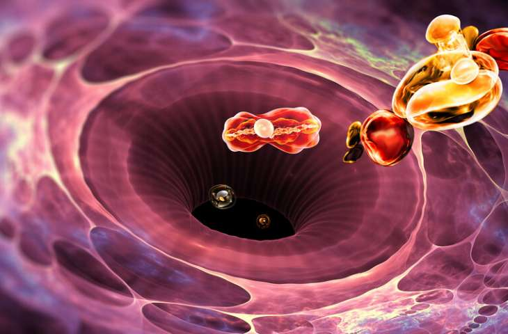 İmmunoterapi ve Kanser Aşısı