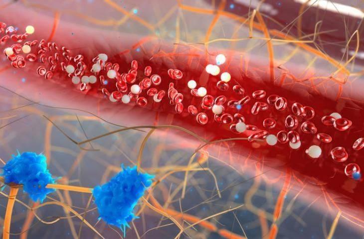 İmmunoterapiler ve Kanser Aşıları