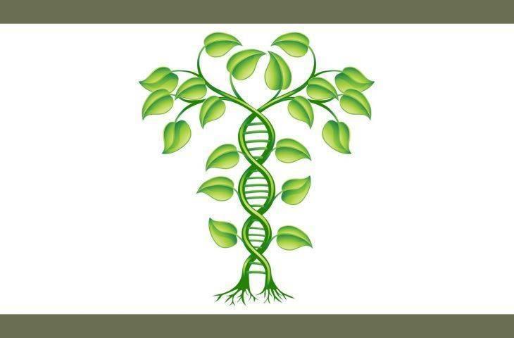 İnsan Genom Projesi nedir? İnsanlığa yapılmış en büyük yatırım olabilir mi?