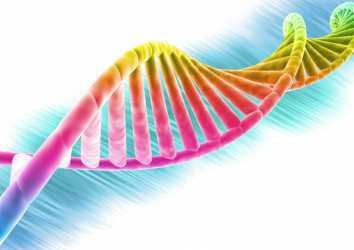 İnsan moleküler genetiği ve genomiği – Önemli gelişmeler ve heyecan verici olasılıklar