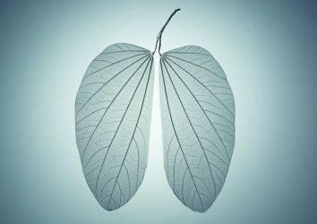 Kadınlarda akciğer kanseri - özellikleri, farklılıkları ve tedavisi