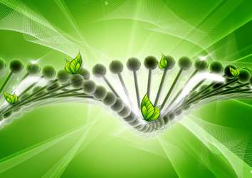 Kalıtsal genetik değişimlerin kanserin yayılmasını nasıl etkilediğine dair ilk çalışma yayınlandı