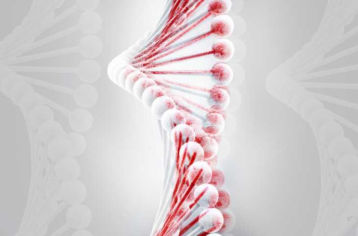 Kalıtsal PALB2 mutasyonu nedir? Taşıyıcıları için risk yönetimi nasıl olmalı?