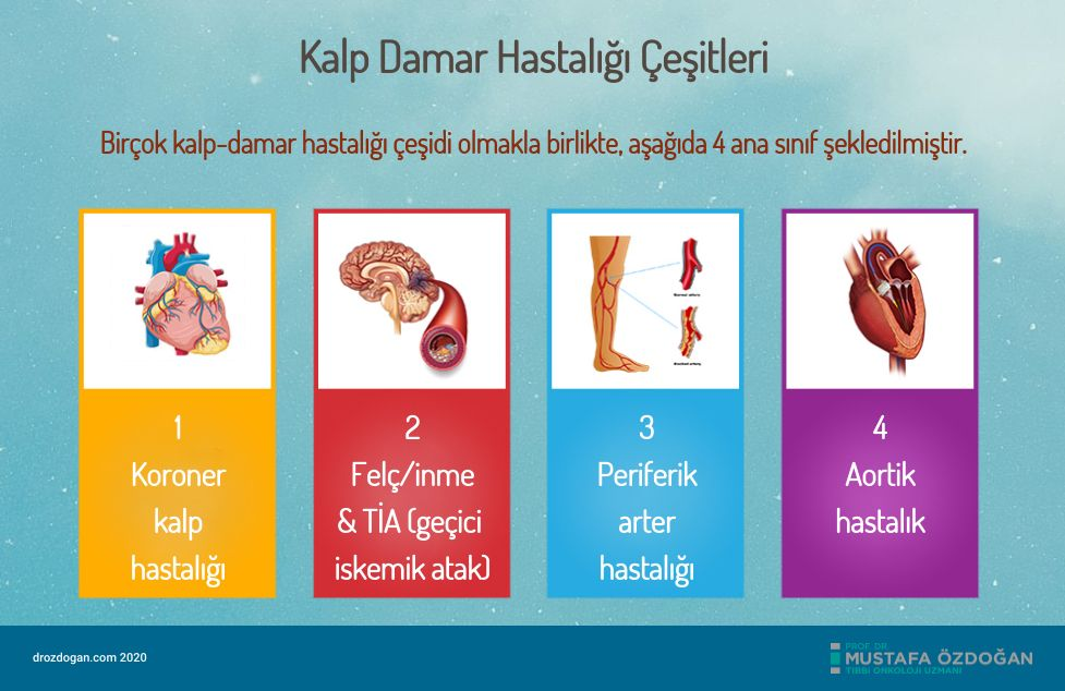 kalp damar hastaligi cesitleri
