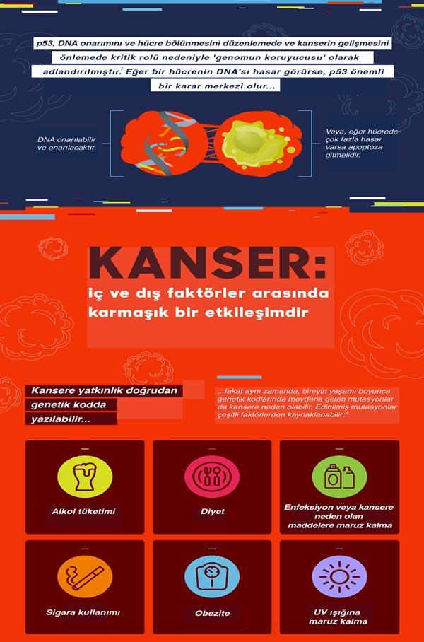 kanser genetigi  (4)