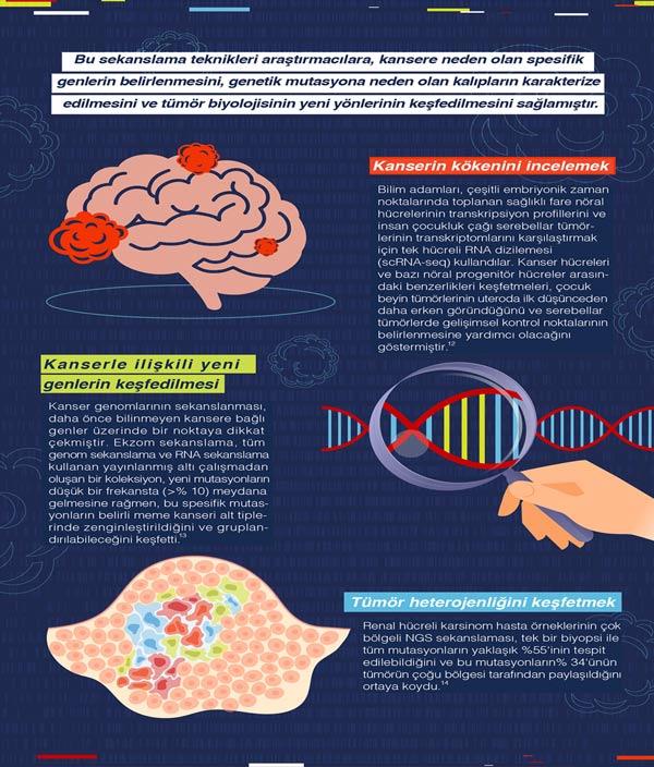 kanser genetigi  (6)