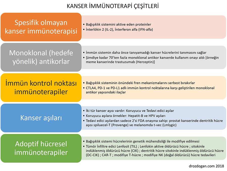 kanser immünoterapi çeşitleri hücresel immünoterapi