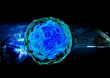Kanser imünoterapi için yeni gelişme: DNA kodlayan anti-CTLA4 monoklonal antikorlar