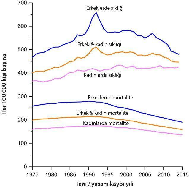 kanser istatistikleri 2018 abd kanser ve yaşam kaybı oranları