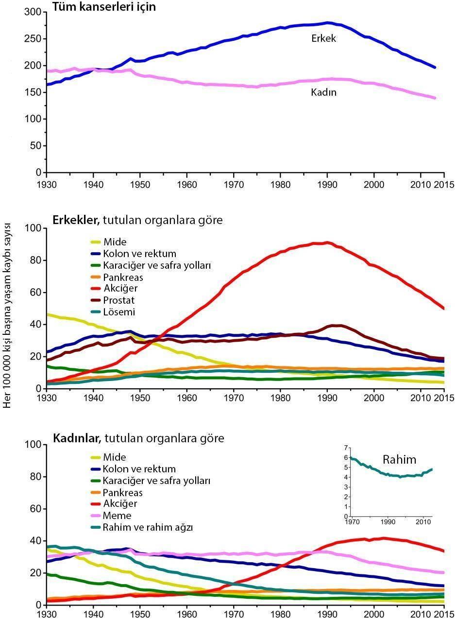kanser istatistikleri yasam kaybi oranlari yıllara göre