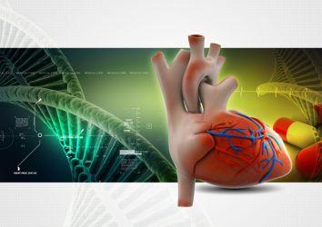 Kanser tedavileri sırasında görülebilen kalp hasarının erken tanısı için bir biyobelirteç keşfedildi